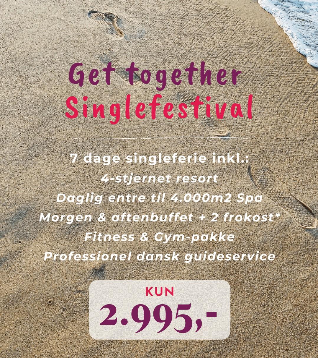 Single festival prisliste